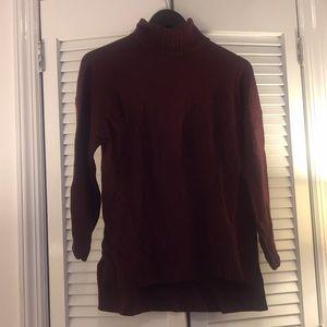 Wool Burgundy Turtleneck Sweater
